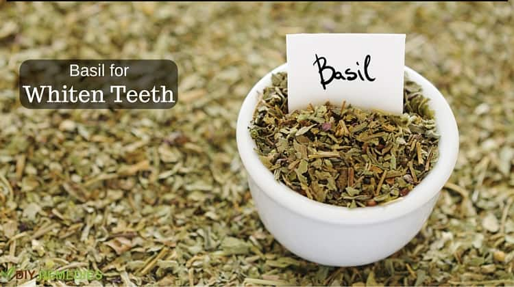 Basil for Whiten Teeth