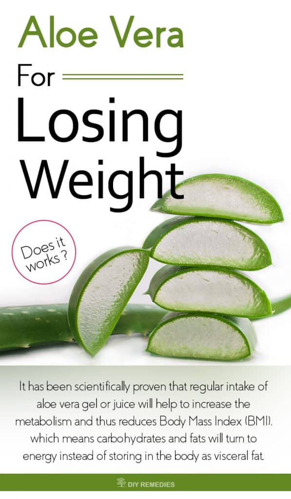 Aloe-Vera-for-Losing-Weight