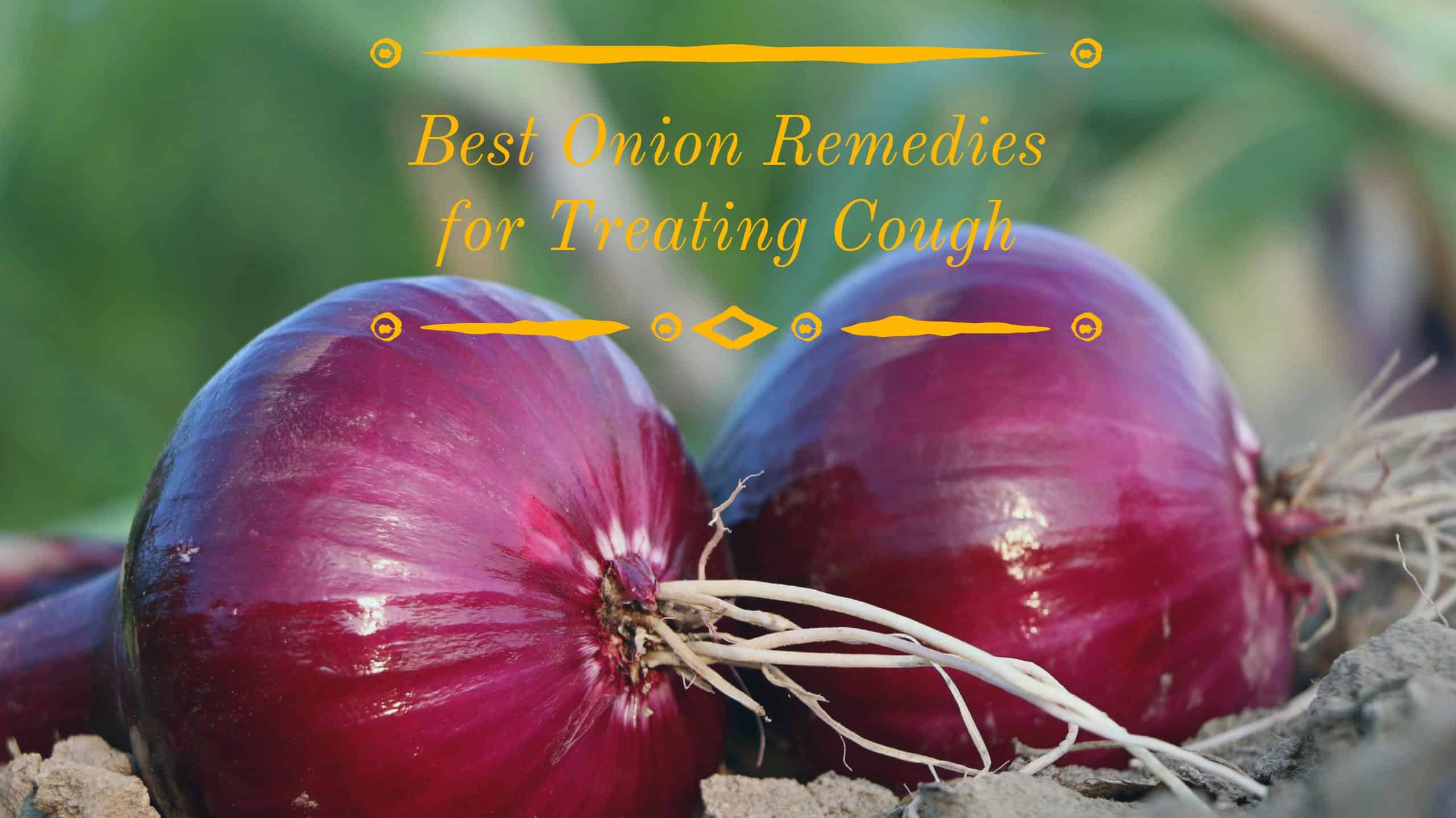 3 best onion remedies for treating cough ccuart Gallery