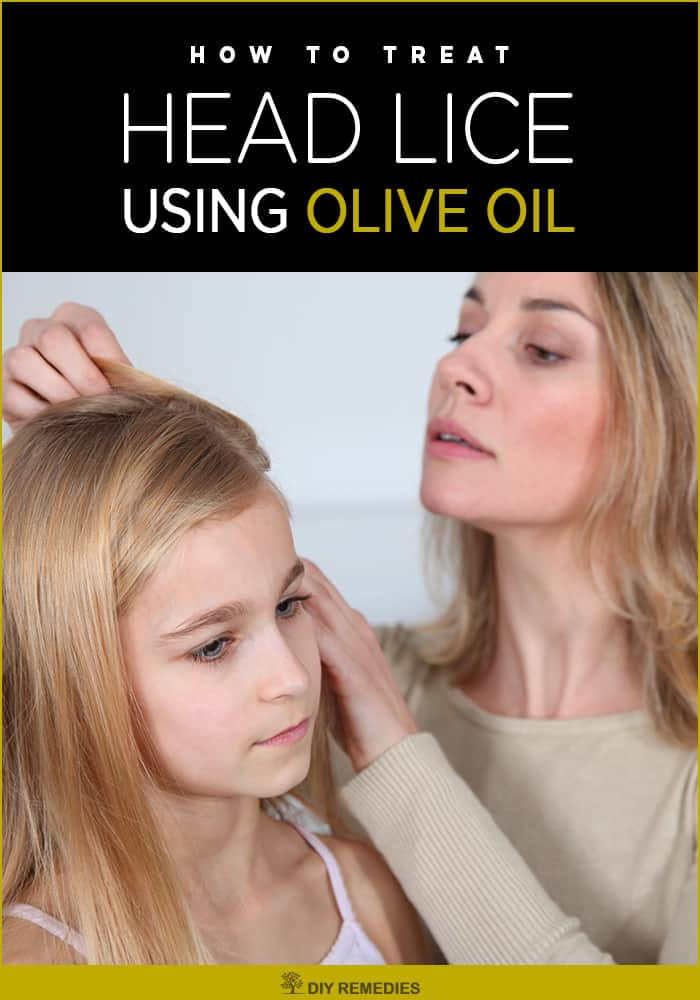 How to treat Head Lice using Olive Oil