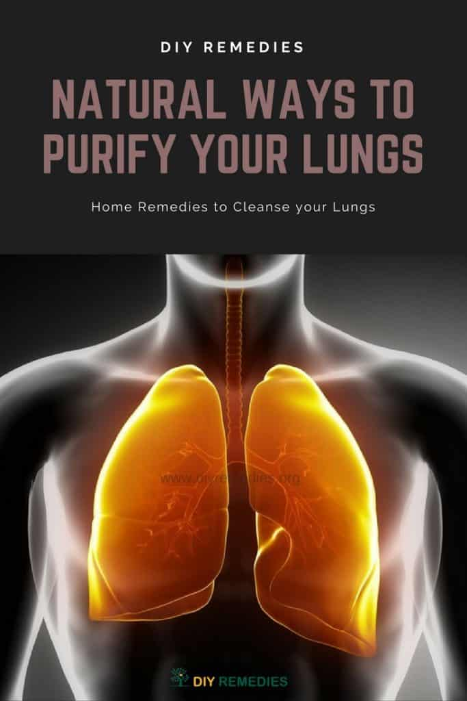 Natural Ways to Purify your Lungs