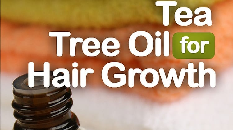 Tea Tree Oil for Hair Growth