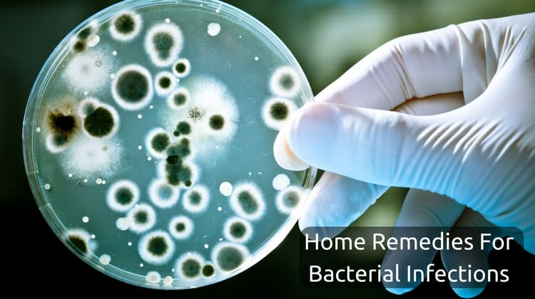 Natural Remedies to Treat Bacterial Infections